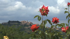 Tuscany Montepulciano with red roses - stock footage