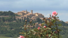 Tuscany Montepulciano with pink rose - stock footage