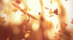 Falling autumn leaves - looped 3D animation - stock footage