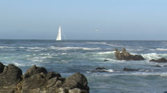 Along the oceanic drive sailboat on a rough sea Stock Footage