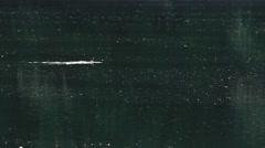 Mallard 02 - stock footage