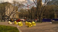 Stock Video Footage of Falun Dafa (Falun Gong), practicing, wide shot, #3