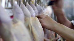 Food processing factory - stock footage