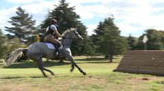 Horse jump breaks board Stock Footage