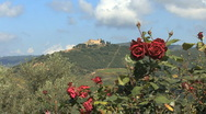 Tuscany roses and landscape 1 Stock Footage