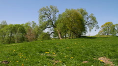Spring park pan Stock Footage