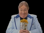Stock Video Footage of Awkward Man presenting Flowers