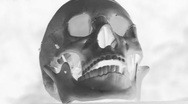 Stock Video Footage of Rotating skull. Inverted black and white.