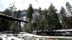Looking up at mountain with stream in woods Stock Footage
