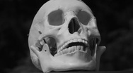 Stock Video Footage of Rotating skull. Black and white.
