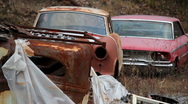 Stock Video Footage of Junkyard Cars