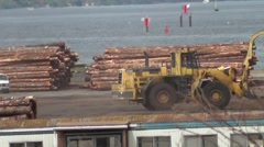 Log Loading 9 Stock Footage