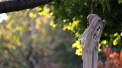 Halloween Decoration - stock footage