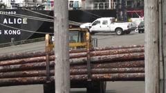 Log Loading 10 Stock Footage