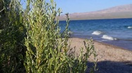 Water and Tides splashing up against the shore in Lake Mohave, Arizona Stock Footage