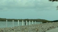 Birds Above the Bay in Key Largo ( HD ) Stock Footage