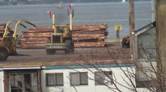 Log Loading 13 Stock Footage