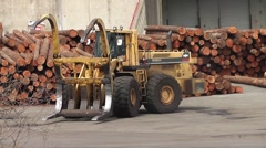 Log Loading 15 Stock Footage
