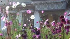 Wild flower scene before Tibetan monastery entrance Stock Footage