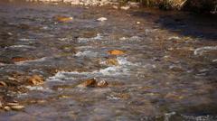 Idaho Creek 113 29.97 Stock Footage