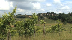 Tuscan village and vineyards Stock Footage
