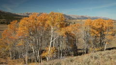 Sawtooth Autumn 137 29.97 Stock Footage