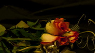 Stock Video Footage of three roses 15 seconds time remap 2