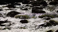 Forest River CU 209 29.97 - stock footage