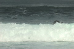 High surf Stock Footage