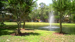 Pond with Trees - stock footage