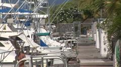 Honokohau Marina With Boats Stock Footage
