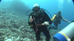 Scuba Diver picks up sea cucumber - stock footage