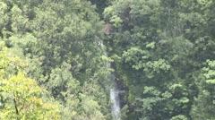 Akaka Falls State Park, Hawaii's Big Island Waterfall Stock Footage
