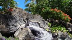 Hawaiian Waterfall Stock Footage