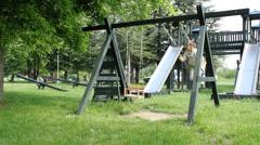 Boy swinging on a swing - stock footage
