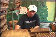 Man & women rolling cigars - stock footage
