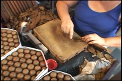 lady rolling another cigar - stock footage