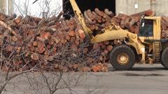 Log Loading 18 Stock Footage