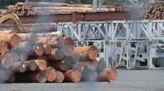 Log Loading 22 Stock Footage