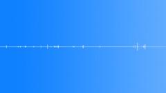 Twig Snaps,Leaf Rustles 4 - sound effect