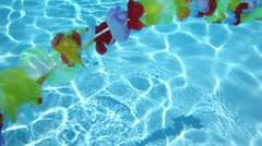 Single line Hawaiian flowers floating in pool water Stock Footage