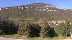 Italy Alto Adige Alps and apple orchard Stock Footage