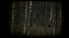 Scary forest vintage clip transition to black Stock Footage