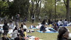 People celebrating the cherry blossom in Yoyogi park Stock Footage