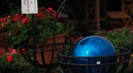 Blue glass globe next to red potted plant Stock Footage