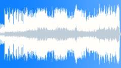 Stock Music of Whiskey Blossom (Radio Edit)