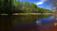 Pure river in grassy meadow Stock Footage