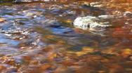 Water stream mountain river Stock Footage