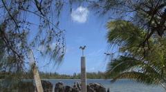 Huahine zooms to sacred bird Stock Footage