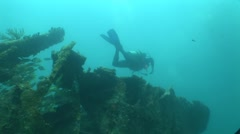 Diver Benwood Wreck Site Stock Footage
